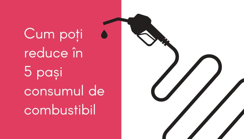 Blog_consum_combustibil-780x445px.png